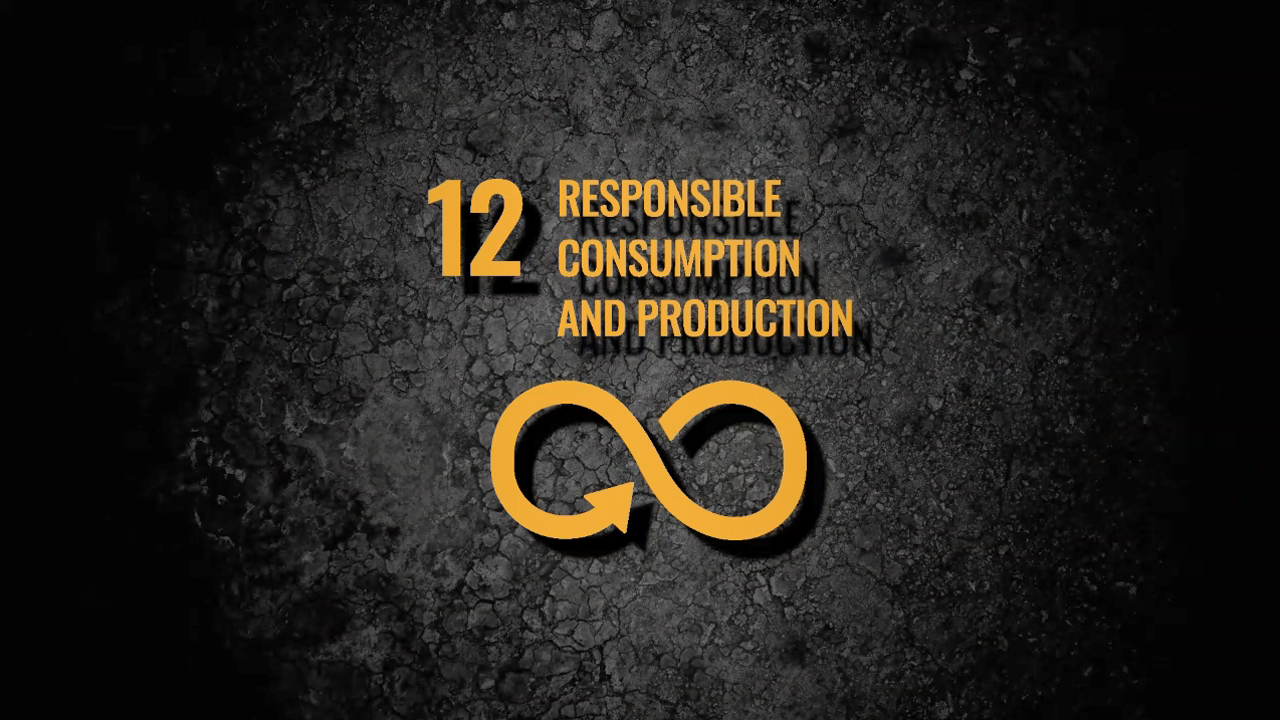 sdg12-responsible-consumption-production