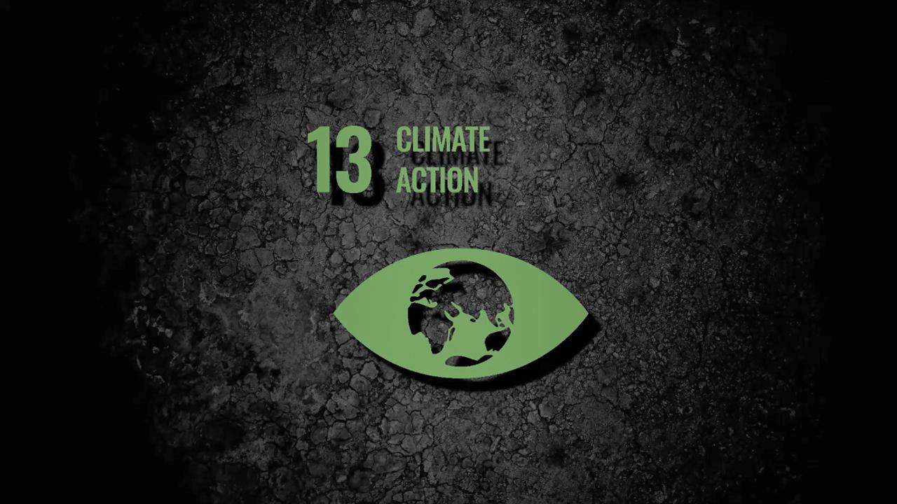 sdg13-climate-action