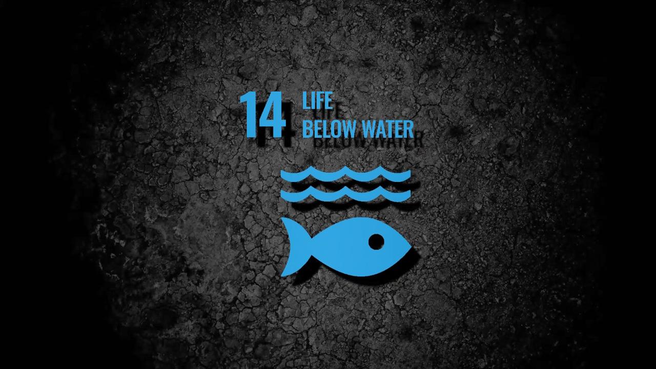 sdg14-life-below-water
