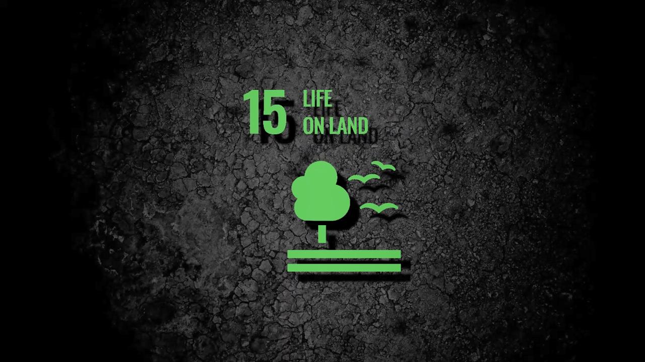 sdg15-life-land