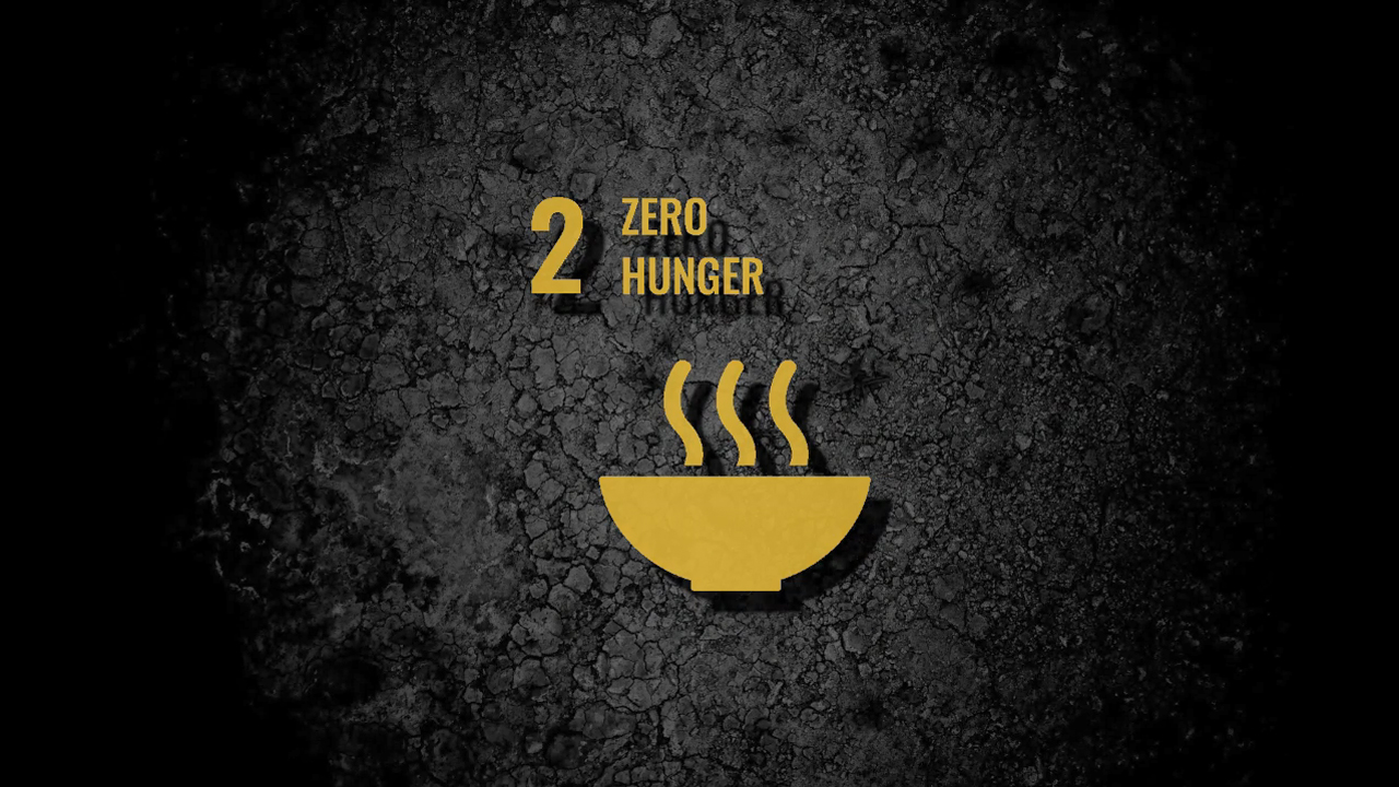 sdg2-zero-hunger